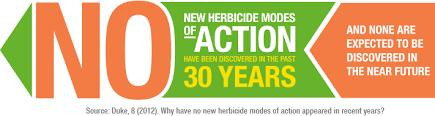 Herbicide Groups Chart Mode Of Action Search Tool Bayer Crop Science
