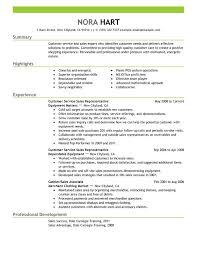 Entry Level Customer Service Resume 10 Representatives Sample