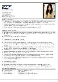 Sap Fico Sample Resume Resume De Sap Fico Sap Consultant Resumes Curriculum Vitae Meaning