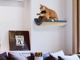 cat shelf pet supplies wall mounted perch cat bed wave shelf pertaining to dimensions 2346 x