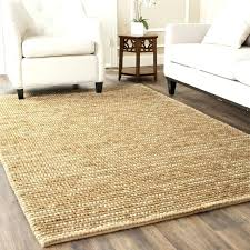 interior pier 1 area rugs cute outdoor likeable lovable 0 pier 1 area