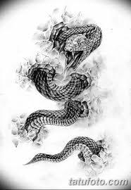тату змея эскизы мужские 09032019 003 Tattoo Sketches