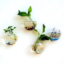 wall mounted vase hanging plant flower glass ball vase terrarium wall fish tank aquarium container wall wall mounted vase