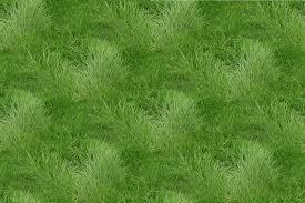 seamless grass texture game. Grass_texture_tiled Seamless Grass Texture Game U
