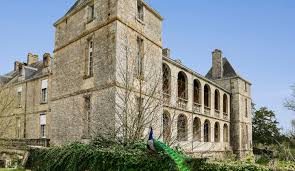 maison de retraite médicalisée château de chaillé domusvi