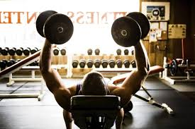 Workout Routines Building Muscle 101