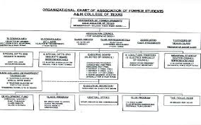 Association Organizational Chart Organizational Chart The Importance Of Organizational