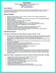 100 Sample Correctional Officer Resume Resume For Ngo Job