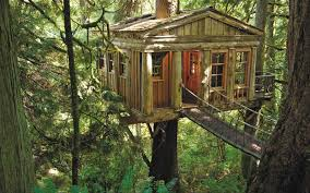 treehouse masters treehouses. Treehouse Masters\u0027 Pete Nelson: 5 Things Every Beginning Builder Must Know Masters Treehouses