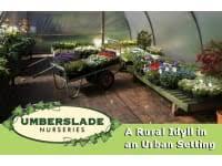garden centres near studley