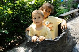 Summer Camp Bronx Zoo