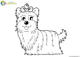 75 Hond Tekenen Stap Voor Stap Kleurplaat 2019