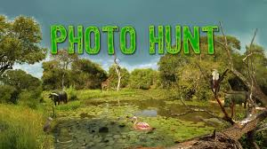 Download and play free hidden object games. Get Hidden Animals Photo Hunt Hidden Object Games Microsoft Store