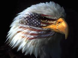 Image result for american eagle