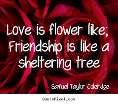 Flowers Love Quotes