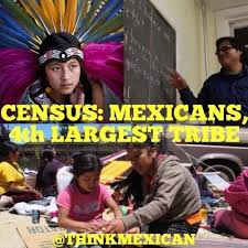 mexicans be like tumblr. Modren Like Mexicans Who Call Themselves American Indian Inside Be Like Tumblr