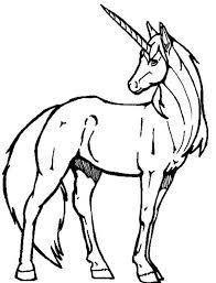 600x788 drawn unicorn coloring book