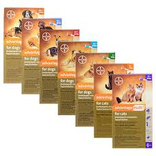 Advantage Dosage Chart For Cats Advantage Multi For Dogs And Cats Free Shipping 1800petmeds
