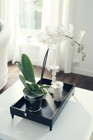 day orchid decor:  images about decorating with orchids on pinterest interior design ferns and orchid arrangements