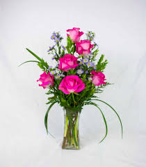 pretty in pink hd roses
