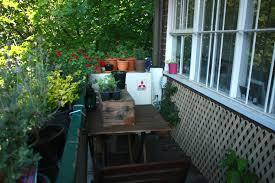balcony garden. Wandering Spice | Balcony Garden
