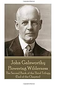 John Galsworthy - The White Monkey: The First Book of the Second Trilogy (A  Modern Comedy): Galsworthy, John: 9781787371064: Amazon.com: Books