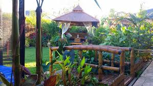 Small Picture Home Tropical Gardens Bali Style Garden Designs Melbourne