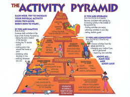 exercise science and fitness training physical activity and the fig 1 the activity pyramid 4