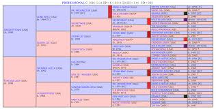 Horse Pedigree Chart Horse Breeding A Closer Look And Professionals Chart