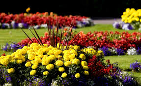 Small Picture Flower Garden Design Home Decorating Ideas And Tips Landscaping