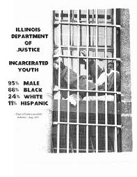 Facts And Statistics Chicago Youth Justice Data Project Page 2