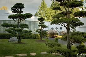 Small Picture modern asian garden design Plushemisphere