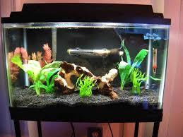 Mario Brothers Aquarium Decorations Aquarium Decor Ideas Aquarium Decor Pinterest Ideas Decor