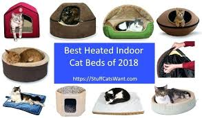 heated cat bed heated cat beds and a block of text saying best heated cat beds heated cat bed cat heated bed outdoor