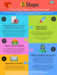 Nature S Domain Puppy Food Feeding Chart What You Should Know About The Fda Alert On Grain Free Dog