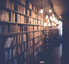 Best 500+ Library Pictures [HD ...