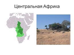 Видеоурок Страны Африки Типовая характеристика стран по предмету  В
