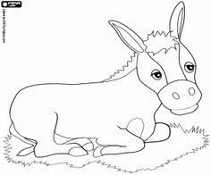 Small Picture Eat Dog Bone Coloring Page Dog Pinterest Dog bones