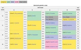 Standard Genetic Code Table Dna Transcription Stop Codon Dna