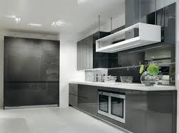 European Modern Kitchen Design Ideas European Tone Gray White modern gray  kitchen cabinets