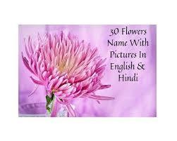 flowers name in hindi and english with