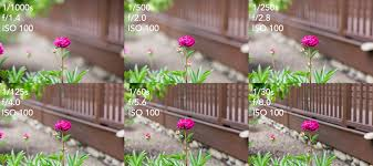 Image result for Understanding the Principles of Aperture