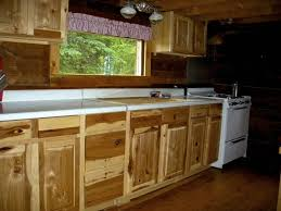 Metal Kitchen Cabinet Doors Kitchen Cabinet Doors For Sale Metal Kitchen Cabinets Glamorous