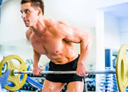Bodybuilding Body Measurement Chart Natural Muscle Building A Look At Potential Genetics Arm