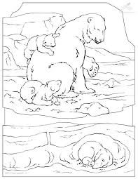 Small Picture Arctic Colouring Pages Polar Bear Mother And Baby Coloring Pages