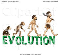 Image result for free pics of human evolution