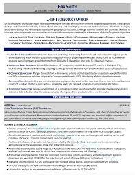 Apply to java developer, full stack developer, senior java developer and more! Executive Resume Samples Director Vp C Level