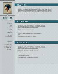 Winway Resume Deluxe 14 Elegant Part 10 Chronological Resume