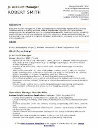 Free Sales Manager Resume Templates Topgamers Xyz