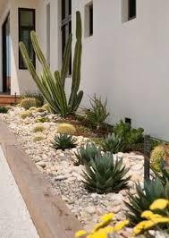 Small Picture Frontyard Landscape Ideas Succulent Gardens Design